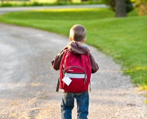 6 ways to get your child to love school petaling jaya pj separation anxiety enjoy friends schoolmates little human scholars toddlers