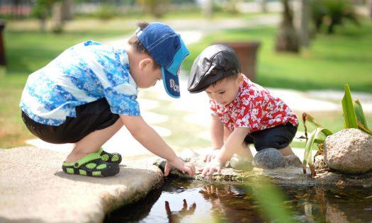 how to tell if your child is an introvert or an extrovert little human scholars petaling jaya pj signs jaya one jaya 33 jalan gasing universiti hospital